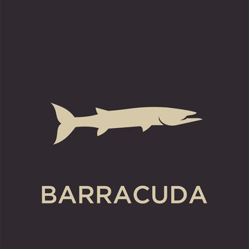BARRACUDA logo icon designs vector