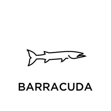 BARRACUDA logo icon designs vector