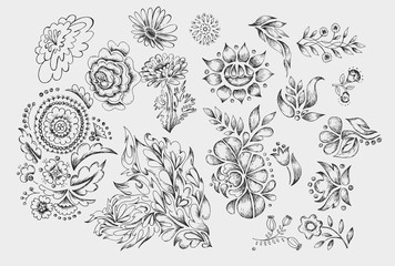 Set of cute hand drawn black ink flowers and herbs, plants.