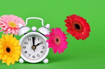 Spring Time Change. Colorful gerbera daisy flowers with retro alarm clock on green background.