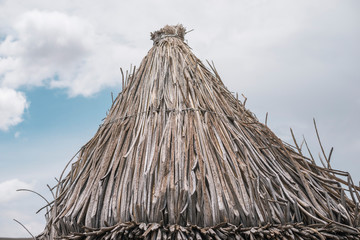 cone shape reed roof