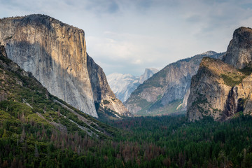 yosemite overview Wall mural