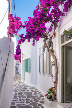 View of a typical narrow street in old town of Naoussa, Paros island, Cyclades