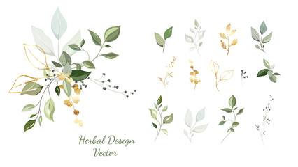 Twigs with gold and green leaves. Set: leaves, herbs, composition of gold and decorative elements.  Vector.