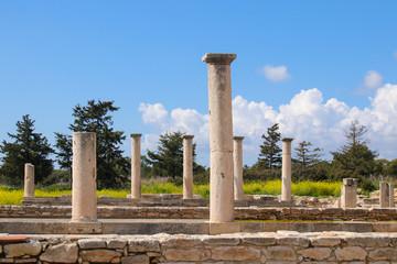 Sanctuary of Apollo Hylates - Kourion in spring, Cyprus