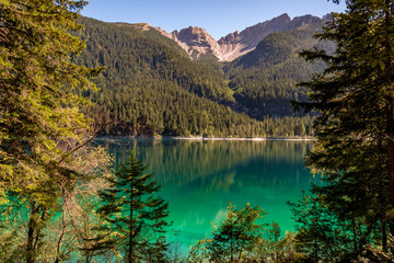Beautiful view of Lake Tovel, the largest of all natural lakes in Trentino in the Adamello Brenta Park.