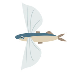 flying fish flat color art illustration