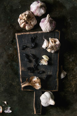 Variety of garlic