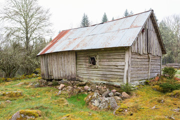 Old weathered shed in the pasture