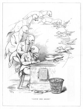 Origin Species, Ch Bennett, Office Man Weasel