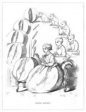 Origin Species, Ch Bennett, Husband Hunter Mouse