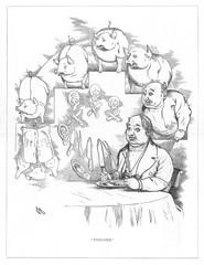 Origin Species, Ch Bennett, Fat Man Pig