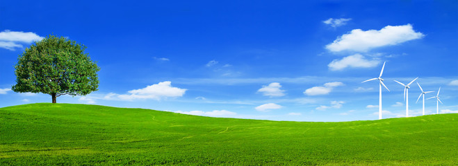 Spoed Fotobehang Donkerblauw Green summer landscape scenic view wallpaper. Beautiful wallpaper. Solitary tree on grassy hill and blue sky with clouds. Lonely tree springtime. Green planet earth. Photo stock.