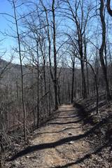 Hiking Trail in Ouachita Mountains of Arkansas
