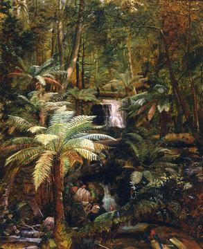 Dense Jungle in New Guinea, Charles E Gordon Frazer