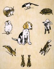 Endpaper Design by Cecil Aldin, Field Babies