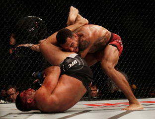 Mixed Martial Arts - UFC