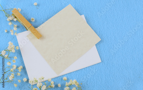 Blue felt background and babies breath border with copy space. A clothespin holds two blank cards. Great for wedding, anniversary, mother's day or birthday. Feminine vibe.