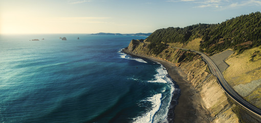 Pacific Coast Highway 101 in Oregon near Port Orford and Humbug Mountain, taken from the air with a drone Wall mural