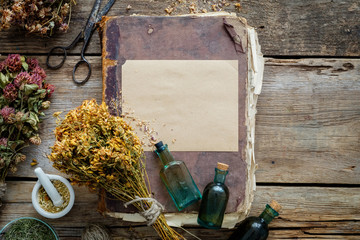 Old vintage book, tincture bottles, assortment of bunches of dry medicinal herbs, mortar. Herbal medicine. Top view.