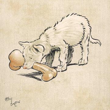Dingo Puppy Aldin