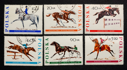 equestrian sports on vintage post stamps