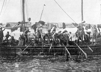 Arab Pearl Divers at Work, 1903