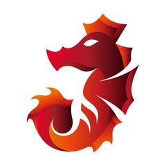 fire logo, seahorse in fire logo concept