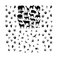 set of animal logo with foot - logo design vector