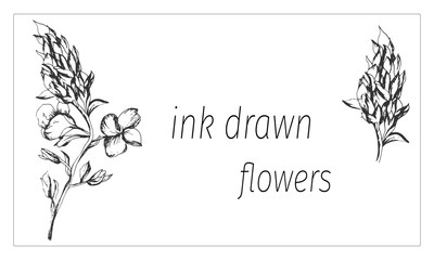 Outline vector flowers. Sketch flower drawn by ink. Contour clipart use design.