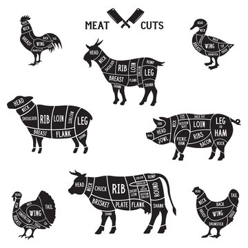 Meat cuts set. Diagrams for butcher shop. Scheme of chicken, beef, pork etc. Animal silhouettes. Guide for cutting.