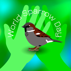 World Sparrow Day. Sparrow on green palms. Green Blur Background. Concept of ecological events