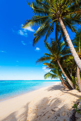 View of the sandy beach, Cook Islands, South Pacific. Copy space for text. Vertical.