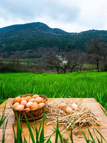 fresh eggs in wooden basket and straw on wooden table in rural area