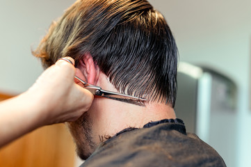 Close up of hairstylist's hands cutting strand of man's hair. Professional hairdresser or barber occupation. Male grooming concept.