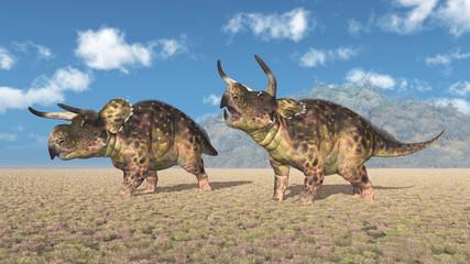 Dinosaurier Nasutoceratops in einer Landschaft