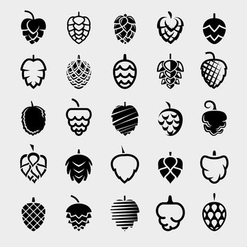 Hop set. Collection icon hops. Vector