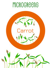 Microgreens Carrot. Seed packaging design, round element in the center. Sprouting seeds of a plant