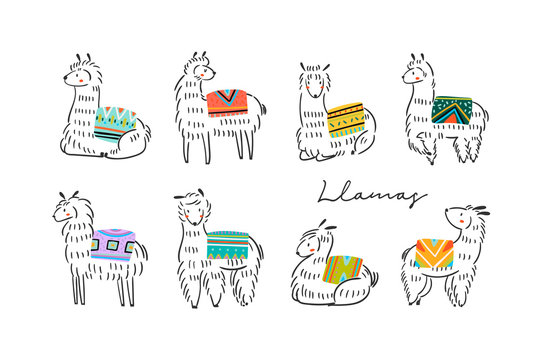 Graphic sketchy llamas in various poses with colorful carpets on back. Hand drawn trendy vector illustration. All elements are isolated