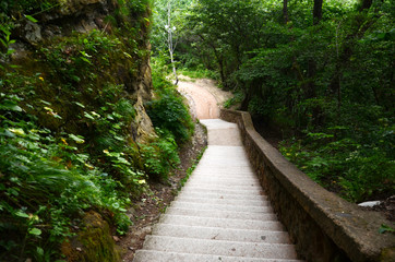 Stairs of natural stone in the Park