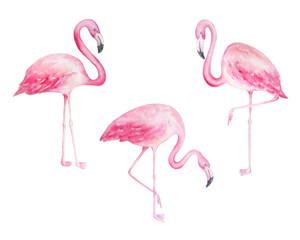 Door stickers Flamingo watercolor flamingos