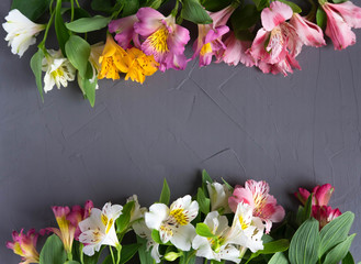 Frame for the text of congratulations with natural flowers of Alstroemeria on a wooden background. Design greeting card with natural colors. Background for text with alstromeria. Flat lay, top view.