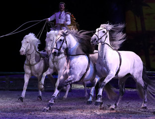 "Horses and an artist perform during a show ""Cavalluna, World of Fantasy"", in Brussels"