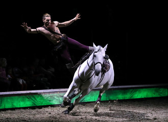 "A horse and an artist perform during a show ""Cavalluna, World of Fantasy"", in Brussels"