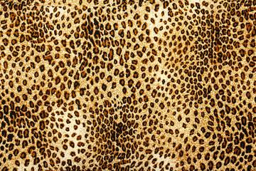 Leopard skin pattern texture. Leopard texture background. Animal print. Leopard fur texture.