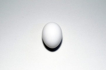 White egg isolated on white background with clipping path included.