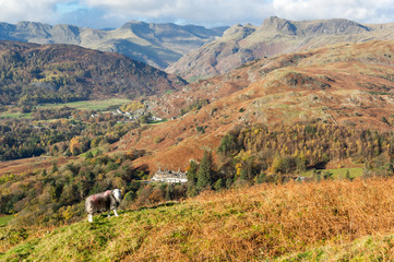 Landscape in the English Lake District