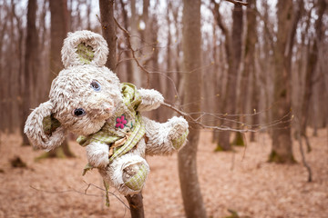 plush toy abandoned in the forest