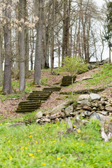 Ancient stone stairs in idyllic spring forest