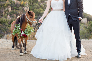 Bride and groom with miniature horse on their wedding